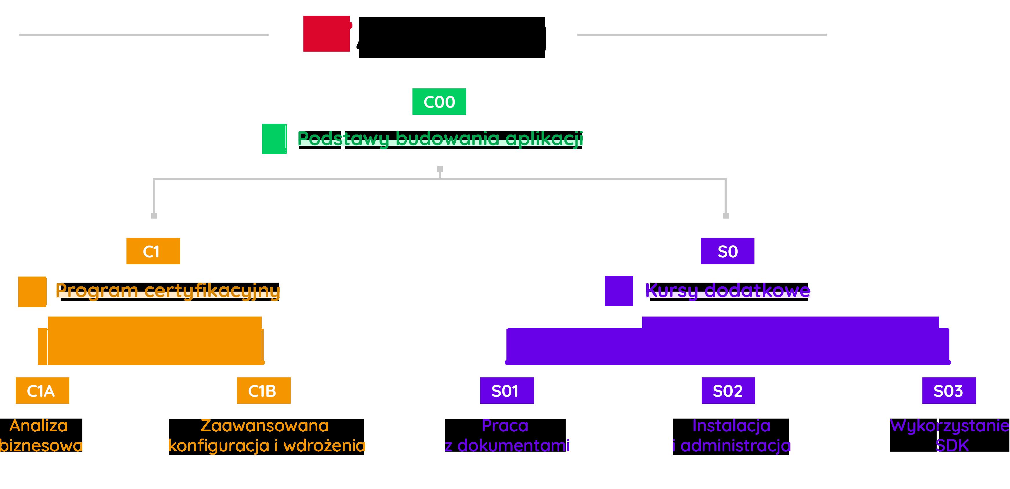 webcon academy struktura szkoleń